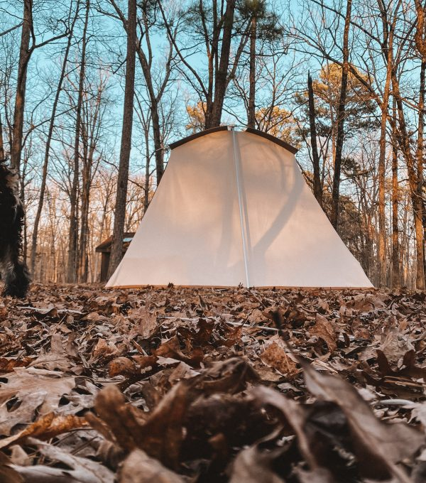 glowing tent in autumn forest
